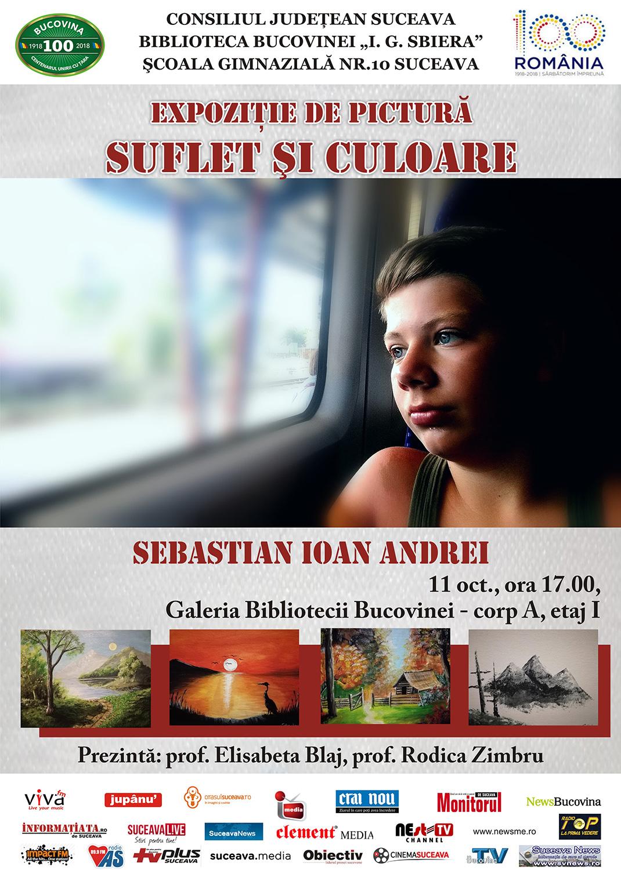 Sebastian Ioan Andrei - Suflet și culoare