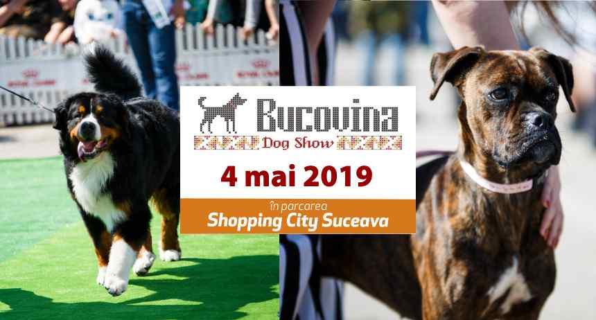 Bucovina Dog Show (2019)