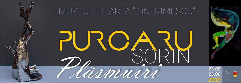 Sorin Purcaru – Plăsmuiri
