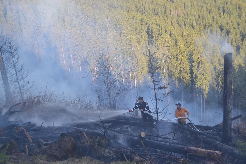 Șase noi incendii de vegețație au amenințat fondul forestier al județului Suceava