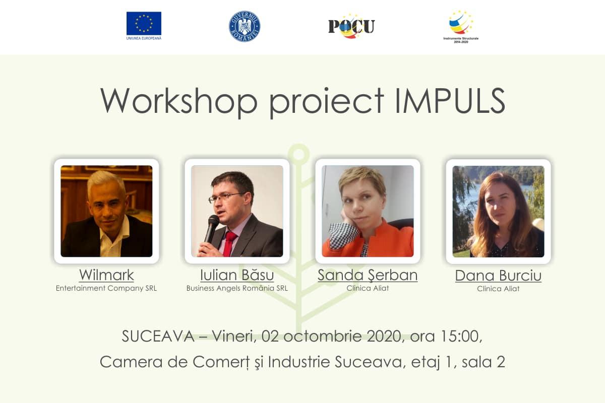 Workshop organizat în cadrul proiectului IMPULS