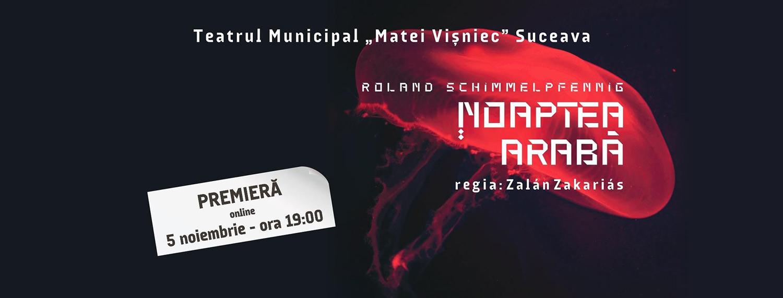 Spectacolele Teatrului Municipal Matei Vișniec din Suceava se mută în online